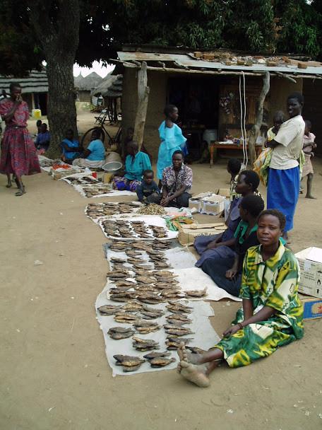market, village, IDP camp, kapelebyong, Teso, uganda, alakara