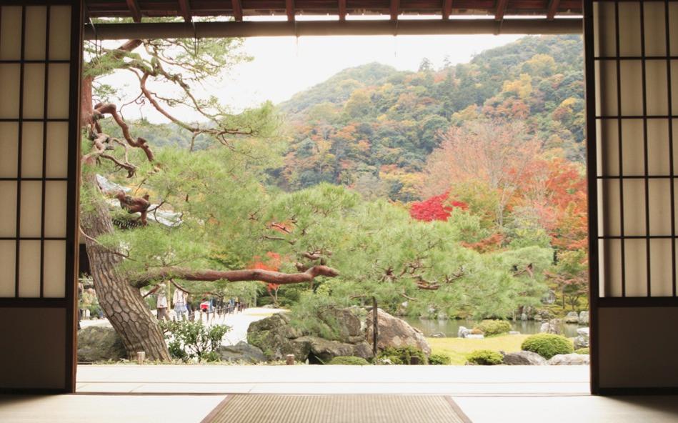 meditation-view-oriental-garden