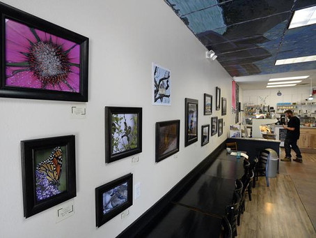 Ink, photography make compelling combination in LoCo Artisan Coffee House exhibit