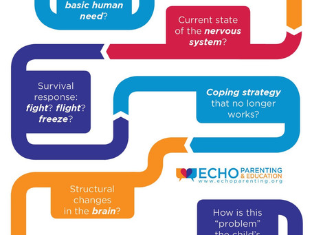 What Lies Beneath Behavior?  by, Echo Parenting & Education