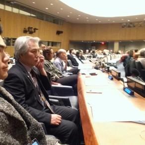 ISEA재단이 뉴욕 유엔본부에서 비정부기구 연례회의 3일째 Special Consultative Status에 통과되었다