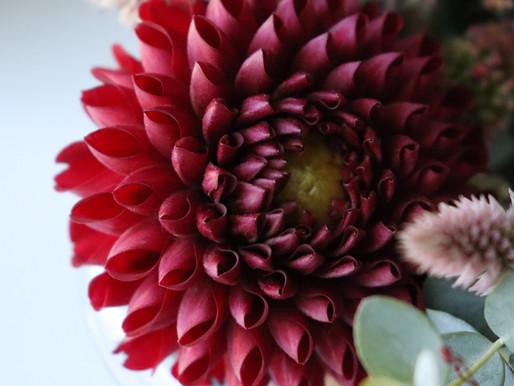 Tips and Tricks For Longer Lasting Flowers