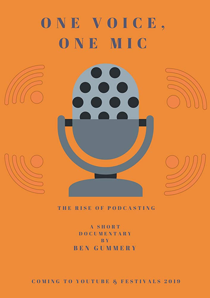 One Voice One Mic poster