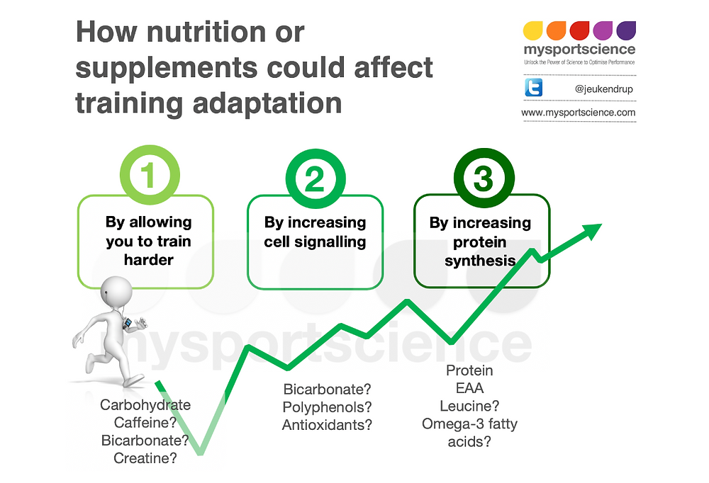 Same training - greater effect: about supplements and training adaptation