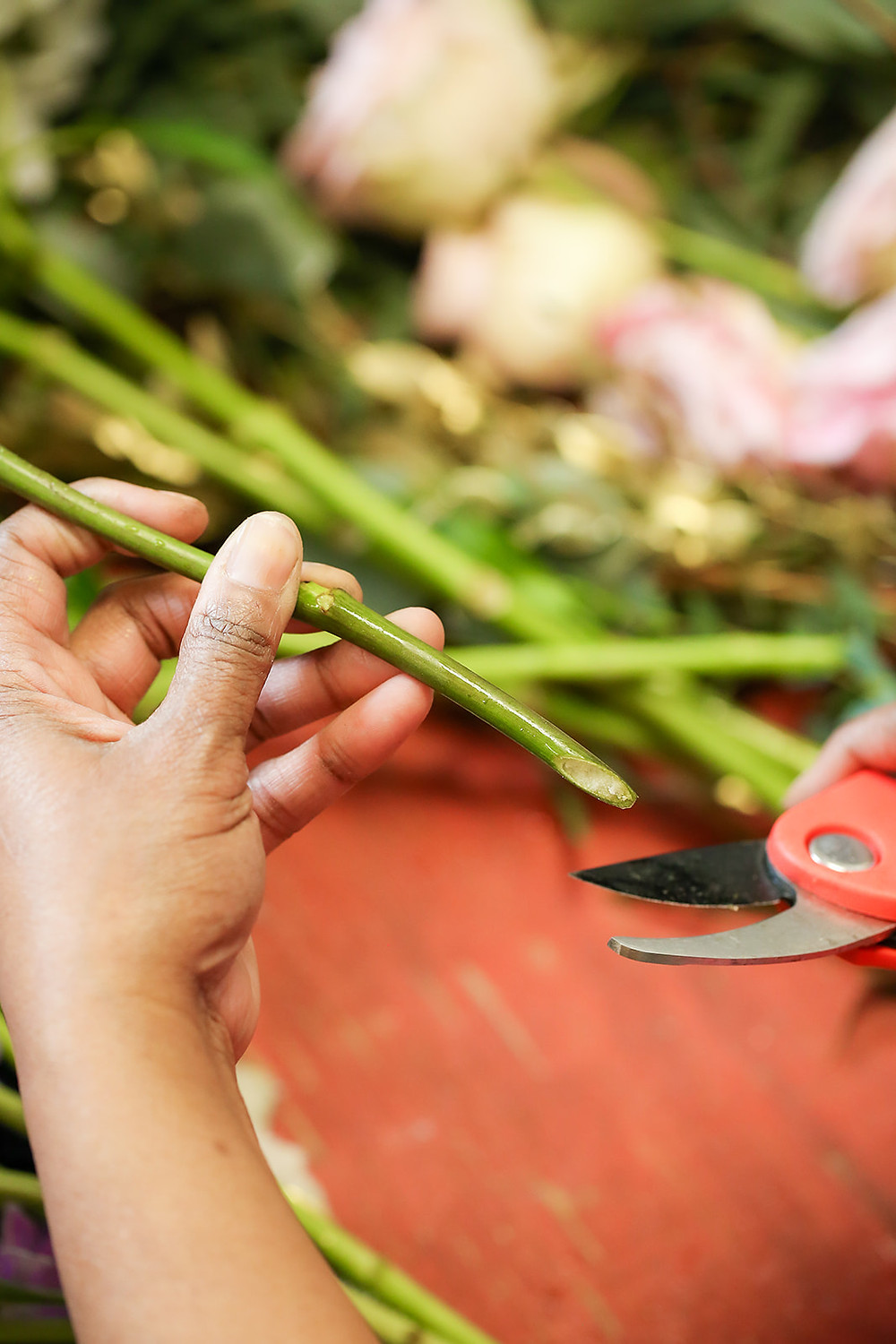 How to cut flower stems to prepare to use in floral designs