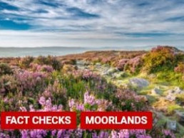 Factcheck: Is 75% of the world's heather moorland in the UK?