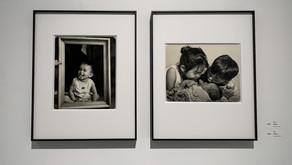 《写真‧寫照~從家出發-劉瑞潮和劉銘浩父子聯展》用愛串起心中那份濃濃的愛