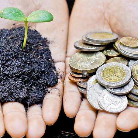 Sustainability vs. Regenerative Processes