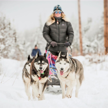 Things To Do in Fairbanks (Winter)