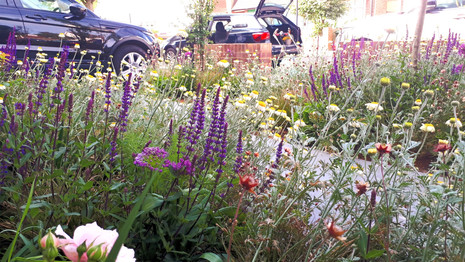 Flower–Filled Front Garden with Off Street Parking