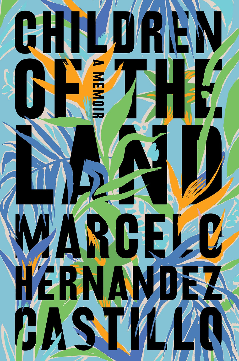 Children of the Land : A Memoir By Marcelo Hernandez Castillo : thebookslut book reviews the book slut