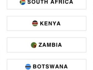Brand Partner   October 2020   Africa update