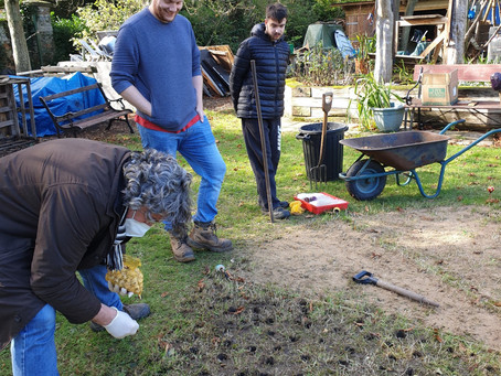 Lawn Revival, Memorial Bulb Circles for Tim Mountford and a New Tool Store and Covered Project Space