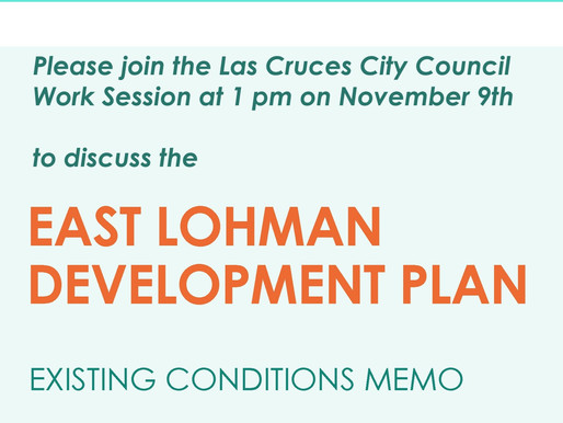 Discuss East Lohman's Existing Conditions & Next Steps at the Work Session on 11/9