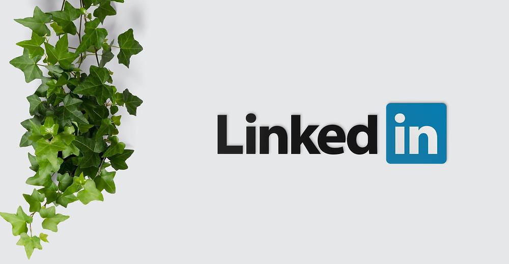 Digitale Mitarbeitersuche auf LinkedIn
