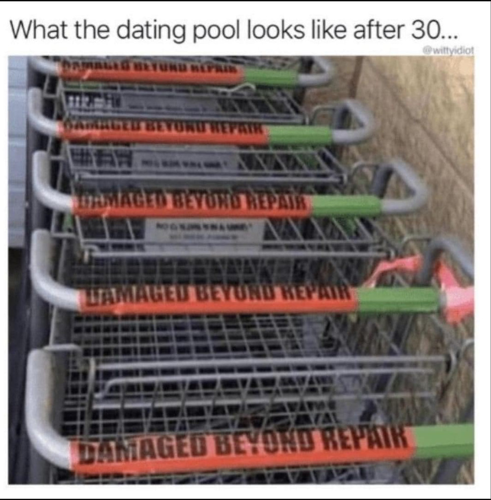 What dating pool looks like after 30. Damaged beyond repair grocery carts Meme & Many More Dating Memes!