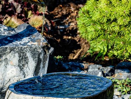 Cesta k dokonalosti výrazu japonské zahrady