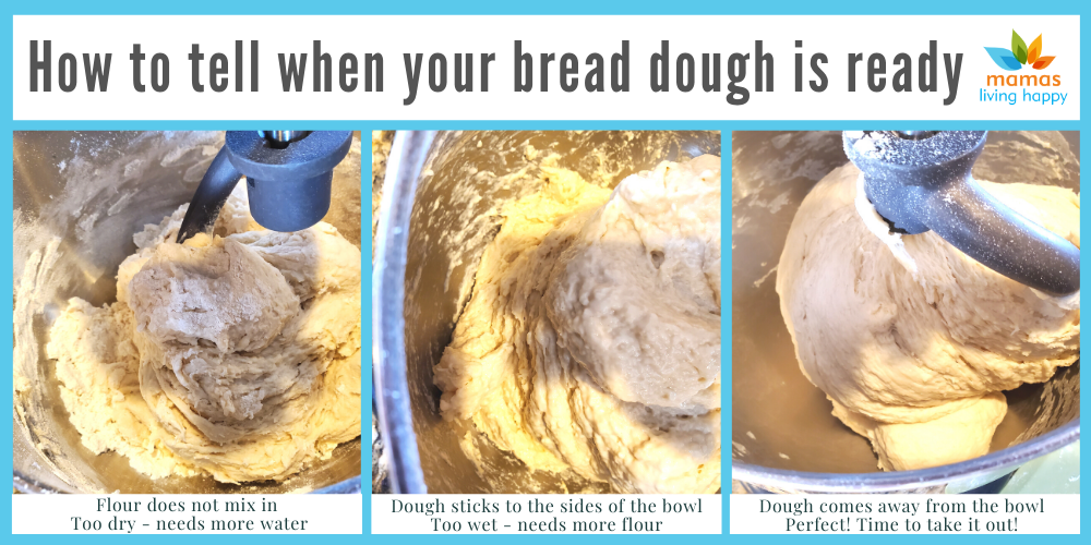 Do you know you how to know if your bread dough is ready? Check this post out to find out how!  Also, check out my One Hour Quick and Easy Bread Recipe with only 6 ingredients.