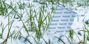 Eco-friendly, gel cold pack, Frosty Tech, Pelton Shepherd Industries, Green designed. Sustainable cold chain. Gel pack in ice surrounded by snow. green ice pack. Cold chain innovation.