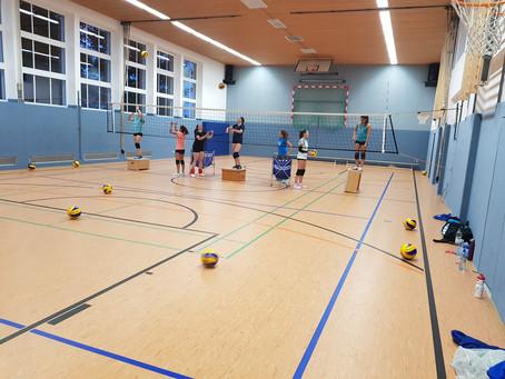 Lechrain Volleys stehen vor neuer Saison - es gibt viel zu organisieren!