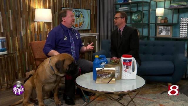Ask Tom: Food concerns for your pet
