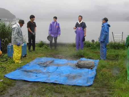 ウナギ石倉カゴ調査の実施