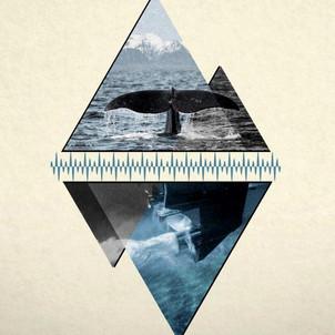 À la découverte des paysages sonores marins