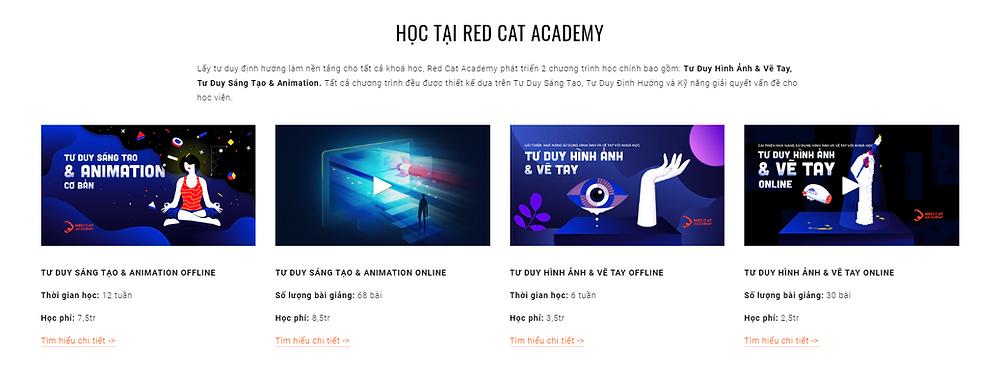 khóa học tại Red Cat Academy