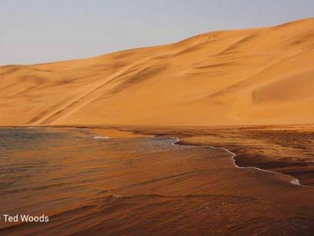 L'EPI salue l'accord entre l'Angola et African Parks pour la gestion du parc national d'Iona