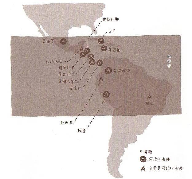 【咖啡小知識】第3回: 咖啡主要栽種在哪些國家、地區?