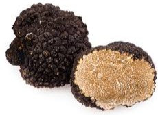 A WORLD OF TRUFFLE SPECIALITIES