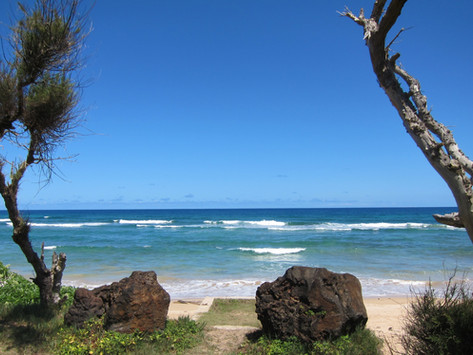 Sommerferietips - Afrika, Australia, Hawaii, Peru
