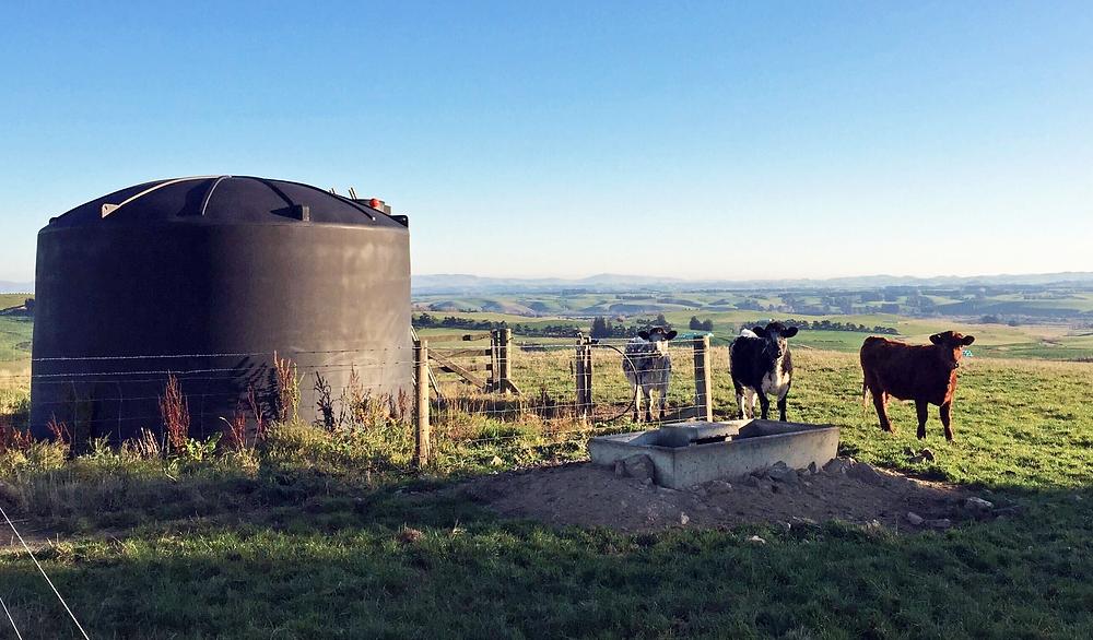 Waterwatch reticulated rural supply