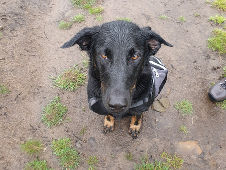 Tyler's Journey - Mud, Rain, and Kinder Scout