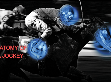 """ANATOMY OF A JOCKEY """"What You Need To Know"""""""