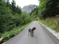 Wanderung auf den Tegelberg