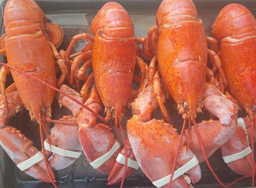 Summah Lobstah Boil