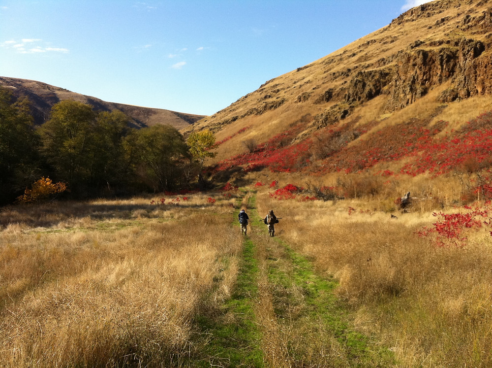 Lapwai Creek crew walking to a sample site in the fall
