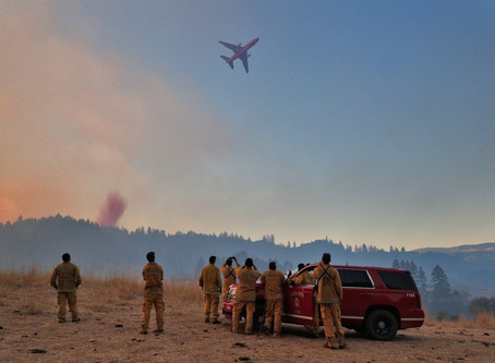 ROUGHLY 1.1 MILLION ACRES BURNED
