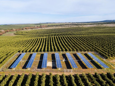 Os Benefícios da Energia Solar na Agricultura