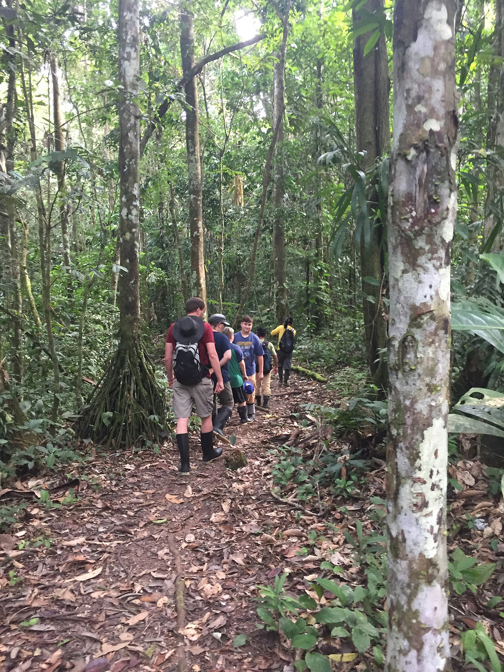 Hiking the Amazon Rain Forest