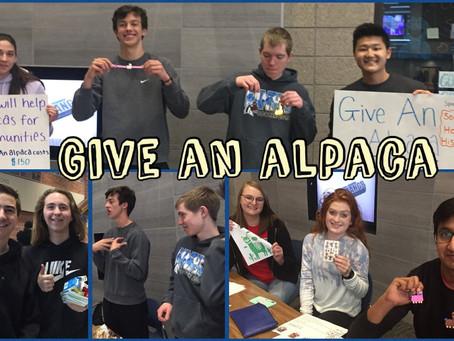 Give an alpaca!
