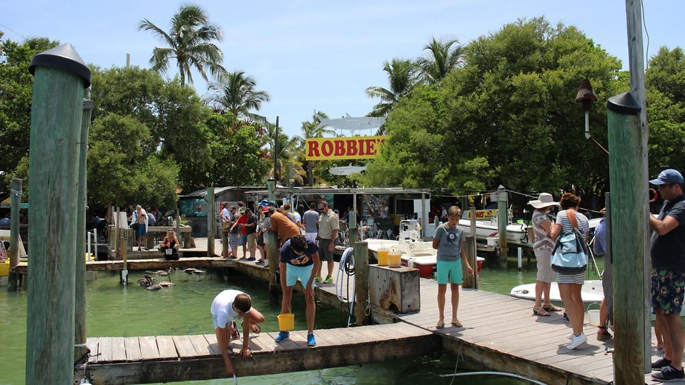 People feeding tarpon by hand off the dock at Robbie's of Islamorada in 2016