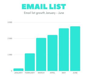 Crochet business report   January - June 2020