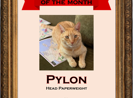 We are proud to announce our August 2020 Employee of the Month: Pylon