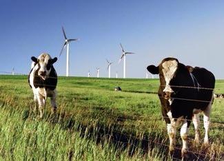 A green Farm is a happy Farm