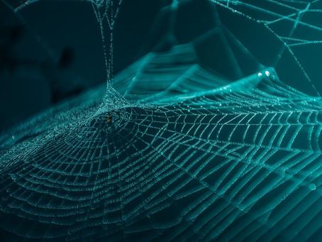 The Dark Side of The Interwebs