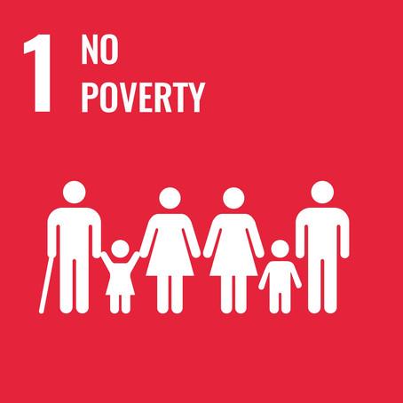 SDG #1: No Poverty