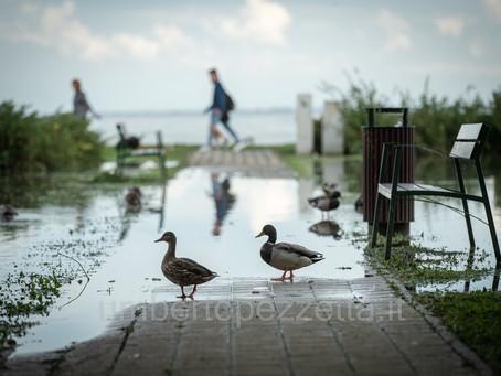 Flooding at Balaton