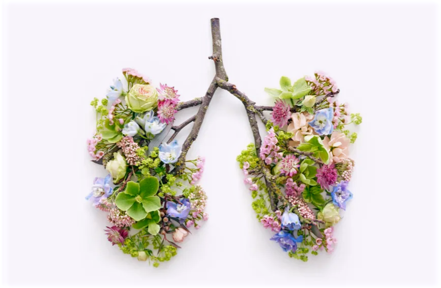 Floral lungs